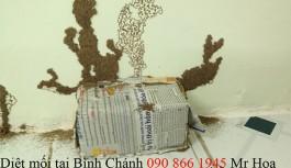 Công ty Diệt Mối Tại Bình Tân